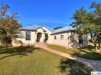 Hays County Single Family Home For Sale: 1008 Spanish Oak