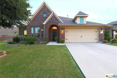 Round Rock Single Family Home For Sale: 2924 Saint Federico