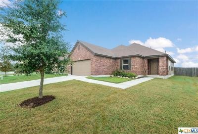 New Braunfels Single Family Home For Sale: 1427 Jericho Ridge