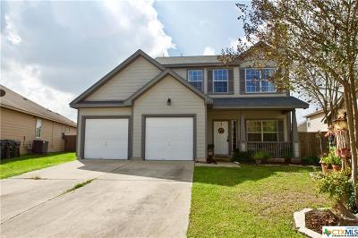Hays County Single Family Home For Sale: 132 Dropper