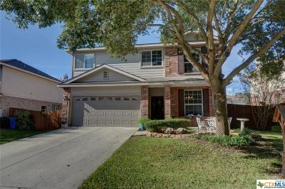 Cibolo Single Family Home For Sale: 312 Silver Wing