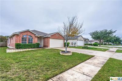 Round Rock Single Family Home For Sale: 3205 Clinton Place
