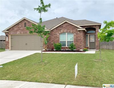New Braunfels Single Family Home For Sale: 2550 Lonesome Creek Trail