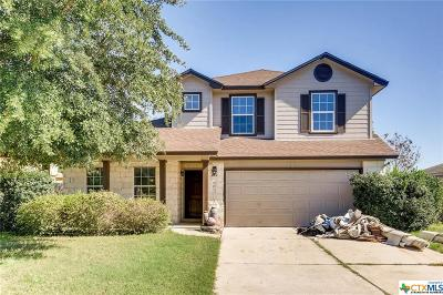 Hutto TX Single Family Home For Sale: $246,900