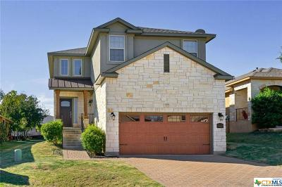 Hays County Single Family Home For Sale: 411 Parkside