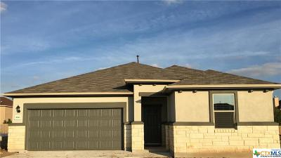 New Braunfels Single Family Home For Sale: 3953 Legend Woods