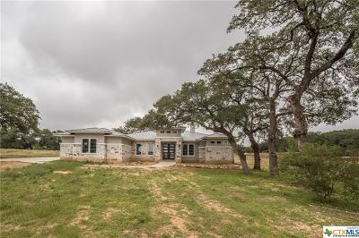 New Braunfels Single Family Home For Sale: 1160 Bordeaux