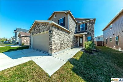 New Braunfels Single Family Home For Sale: 2056 Brandywine