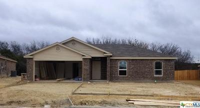 Copperas Cove, Kempner Single Family Home For Sale: 2519 Heartland Drive