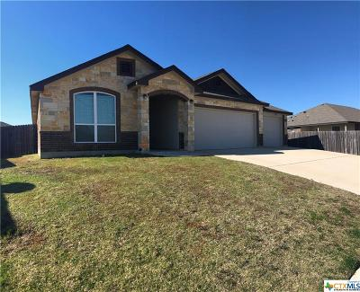 Killeen Single Family Home For Sale: 6507 Castle Gap Drive