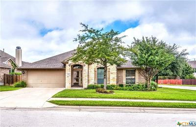 Round Rock Single Family Home For Sale: 4231 Adagio Place
