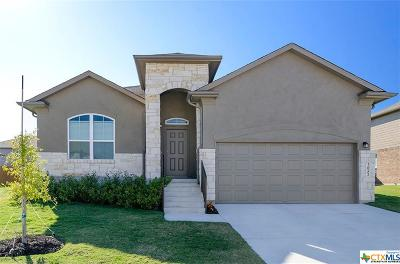New Braunfels Single Family Home For Sale: 2052 Flintshire Drive