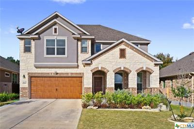 San Marcos TX Single Family Home For Sale: $389,000