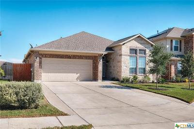 Hays County Single Family Home For Sale: 351 Orchard Hill Trail