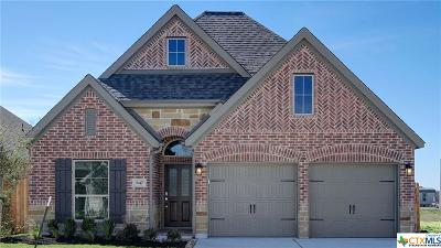 New Braunfels Single Family Home For Sale: 647 Arroyo Dorado