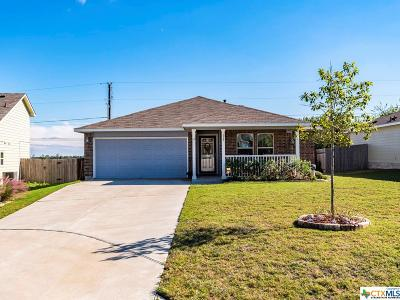 Hays County Single Family Home For Sale: 137 Westminster