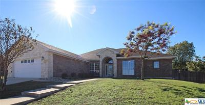 Killeen Single Family Home For Sale: 4805 Cinnamon Stone Drive