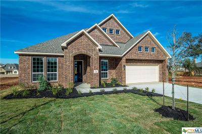 New Braunfels TX Single Family Home For Sale: $364,023