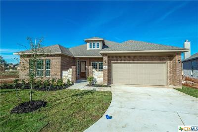 New Braunfels TX Single Family Home For Sale: $387,452