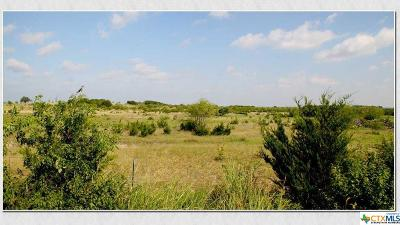 Bell County, Burnet County, Coryell County, Lampasas County, Mills County, Williamson County, San Saba County, Llano County Residential Lots & Land For Sale: Bcr 101
