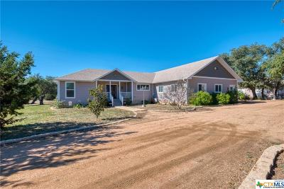 Fischer TX Single Family Home For Sale: $368,000