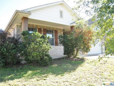Hays County Single Family Home For Sale: 418 Summer Drive