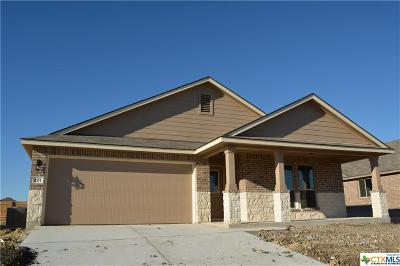 Killeen TX Single Family Home For Sale: $177,455