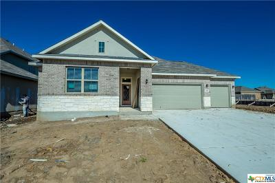 Comal County Single Family Home For Sale: 3166 Daisy Meadow