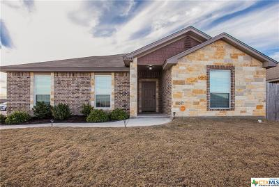 Temple, Belton Single Family Home For Sale: 2604 Elk Creek