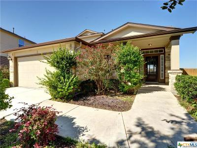 Hays County Single Family Home For Sale: 4009 Monterrey Oaks