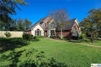 Belton Single Family Home For Sale: 1202 Point Court