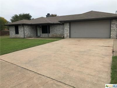 Lorena TX Single Family Home For Sale: $195,000