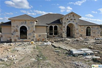 Bell County Single Family Home For Sale: 1008 Park View