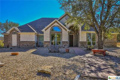Salado Single Family Home For Sale: 1321 Great Oaks Drive