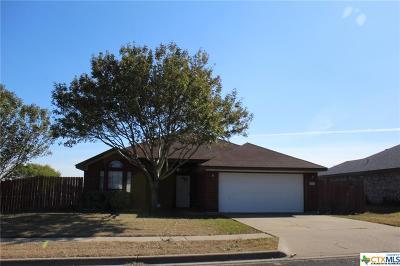 Killeen Single Family Home For Sale: 3910 Split Oak Drive