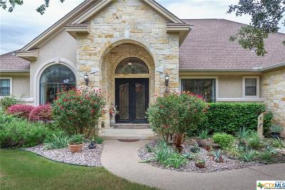 Williamson County Single Family Home For Sale: 213 Copper Leaf Court