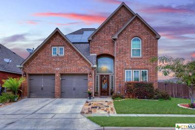 Seguin Single Family Home For Sale: 2969 Prairie Bluff