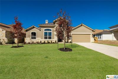 New Braunfels TX Single Family Home For Sale: $438,701