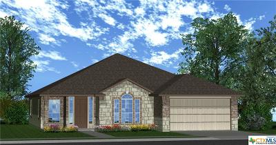 Bell County Single Family Home For Sale: 1203 Iron Glen