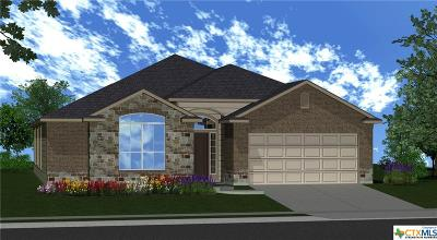 Bell County Single Family Home For Sale: 1202 Iron Glen