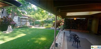 Seguin Single Family Home For Sale: 813 Bismark Street