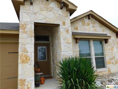 New Braunfels Single Family Home For Sale: 2543 Diamondback Trail