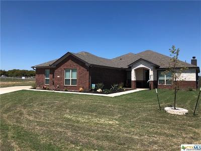 Salado Single Family Home For Sale: 11004 La Paloma Loop West