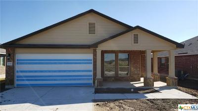 Bell County Single Family Home For Sale: 6321 Stonehaven Drive