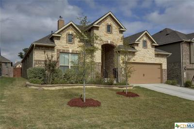 San Antonio Single Family Home For Sale: 11707 Caitlin Ash