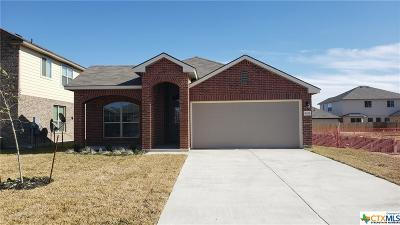 Bell County Single Family Home For Sale: 6221 Dorothy Muree Drive