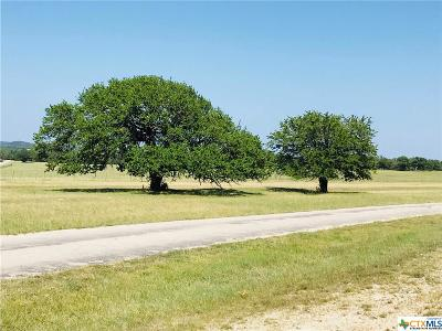 Killeen Residential Lots & Land For Sale: 10653 E Trimmier 10.5ac Lot 1 Road