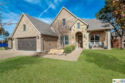 New Braunfels Single Family Home For Sale: 500 Mission Hill Run