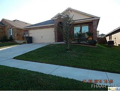 Single Family Home For Sale: 9517 Fratelli