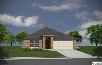 Temple TX Single Family Home For Sale: $164,410